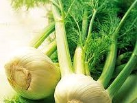 Vegetable fennel