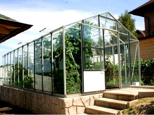 hothouse for cucumber