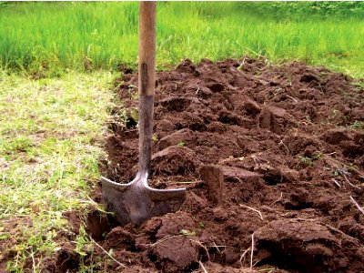 mineral fertilizers in the soil